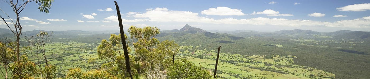 A view of Mt Warning in the North Coast region