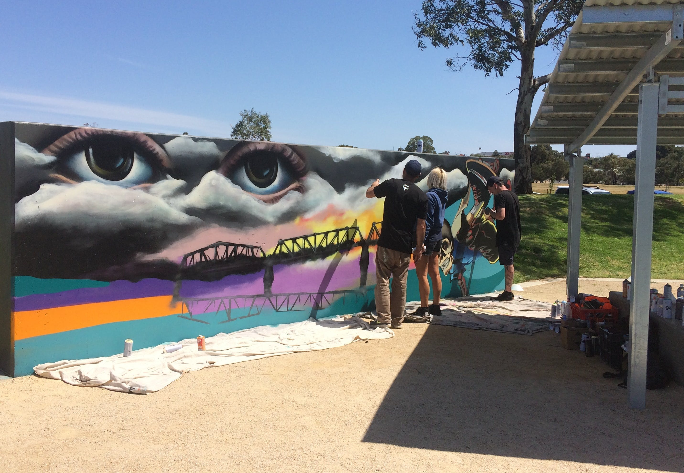 Community Saffety Plan image Skate Park Art Wall 2018