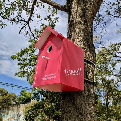 We asked for feedback via colourful birdhouses installed in the trees at Wangaratta Street Park.