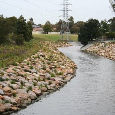 Example of a previous naturalisation project