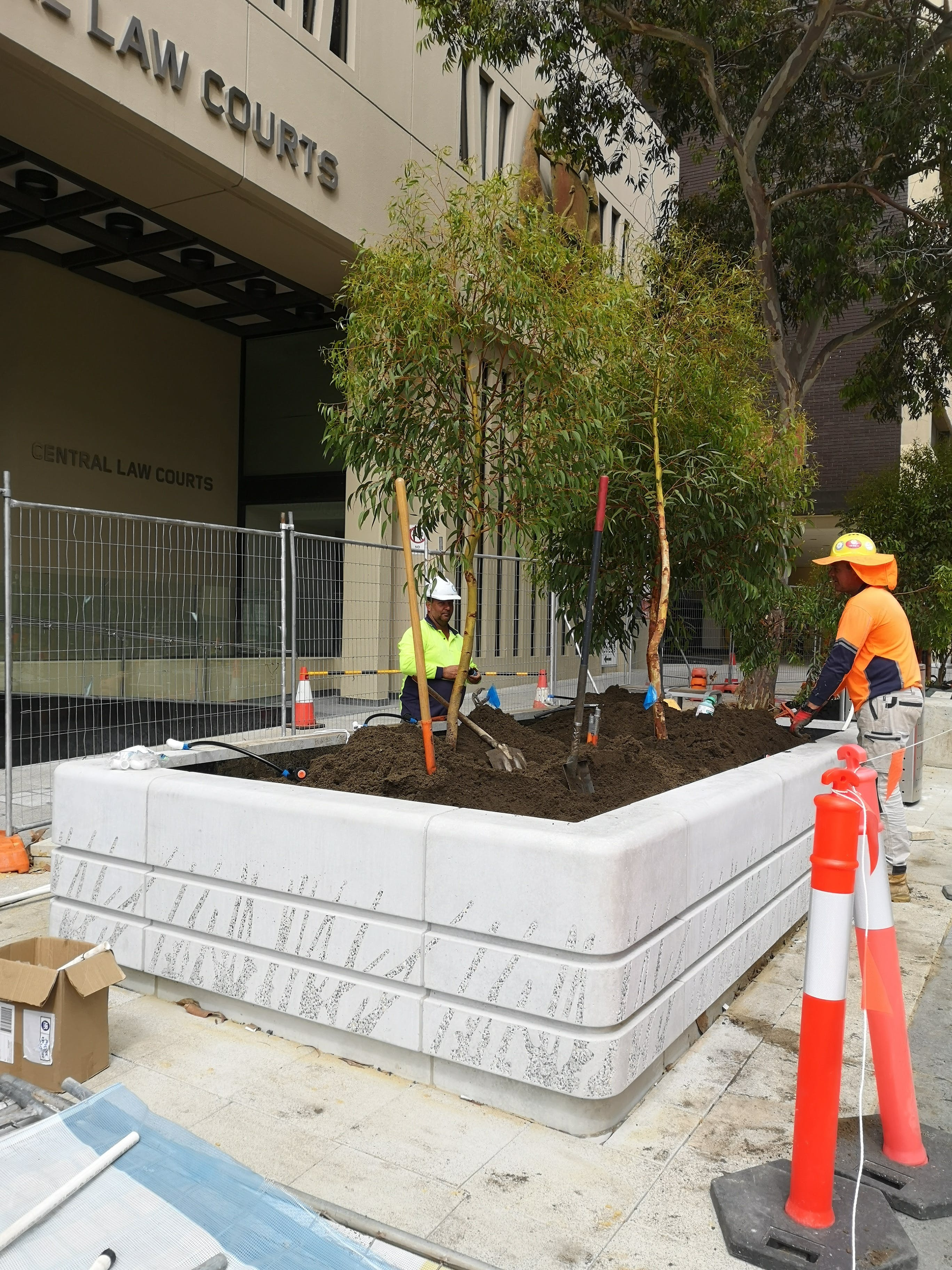 Kaal Yimniny Tree Installation.jpg