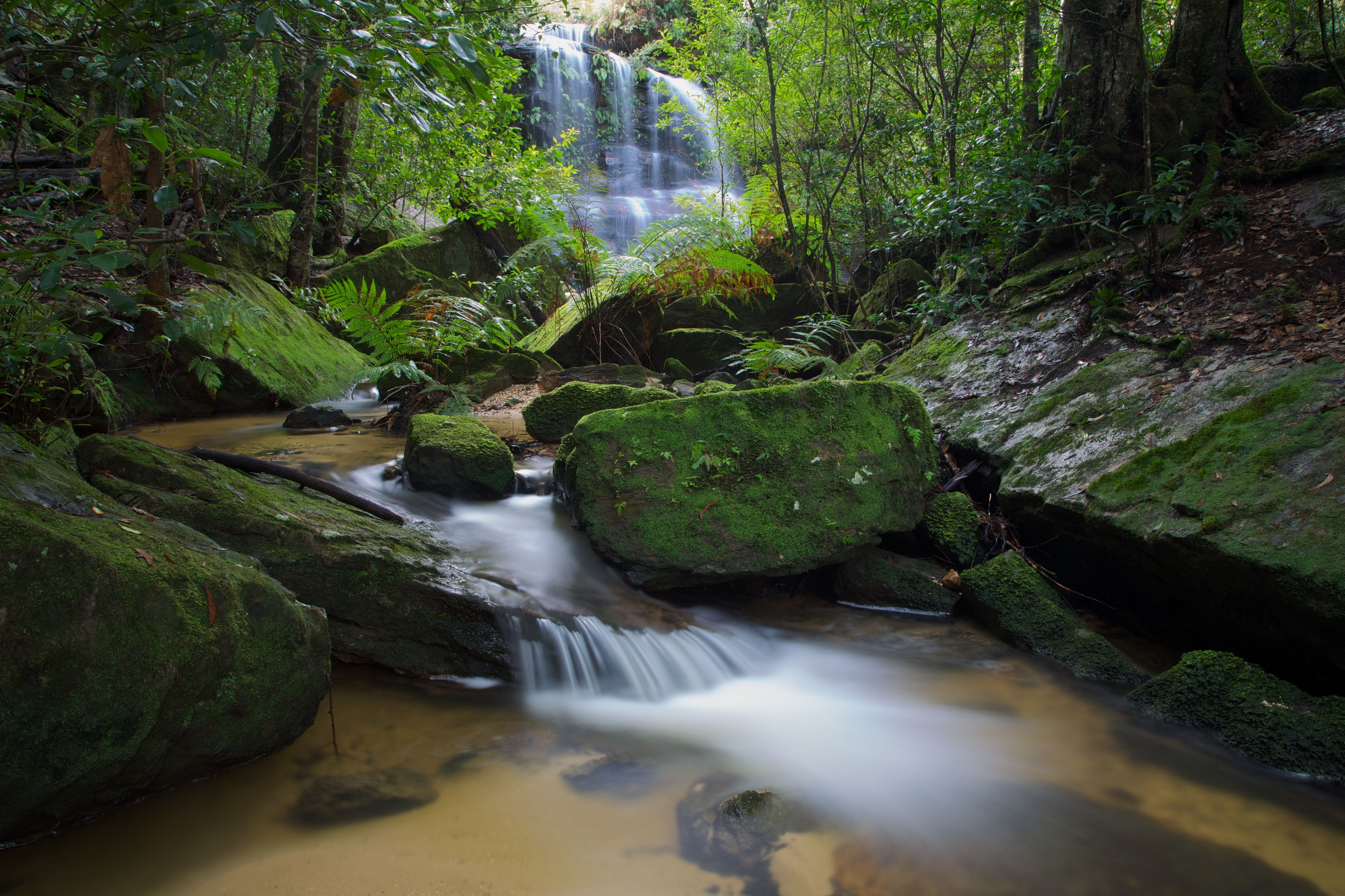 South Lawson Waterfall (Photo by David Noble)