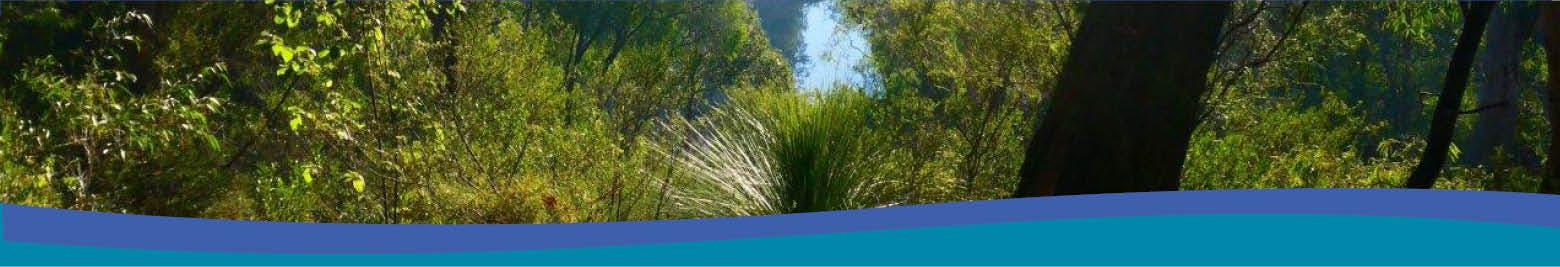 Your Say - Draft Margaret River Protection Strategy