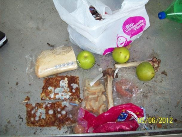 Food waste in recycle bin - from FRWA Waste Audit.