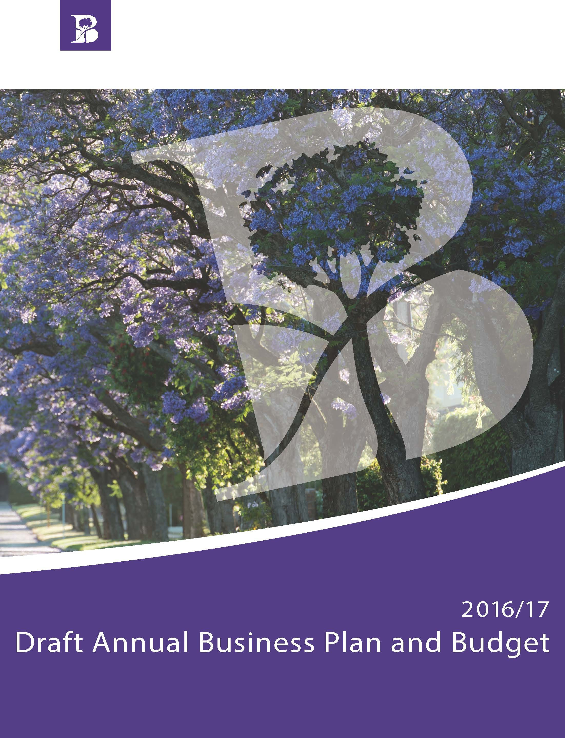 The 2016/17 Draft Business Plan and Budget is available online in the Document Library below. You can also view a copy at the Civic Centre Customer Desk.