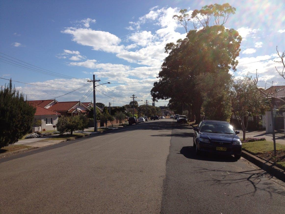 Trevilyan Street,  Rosebery (before)