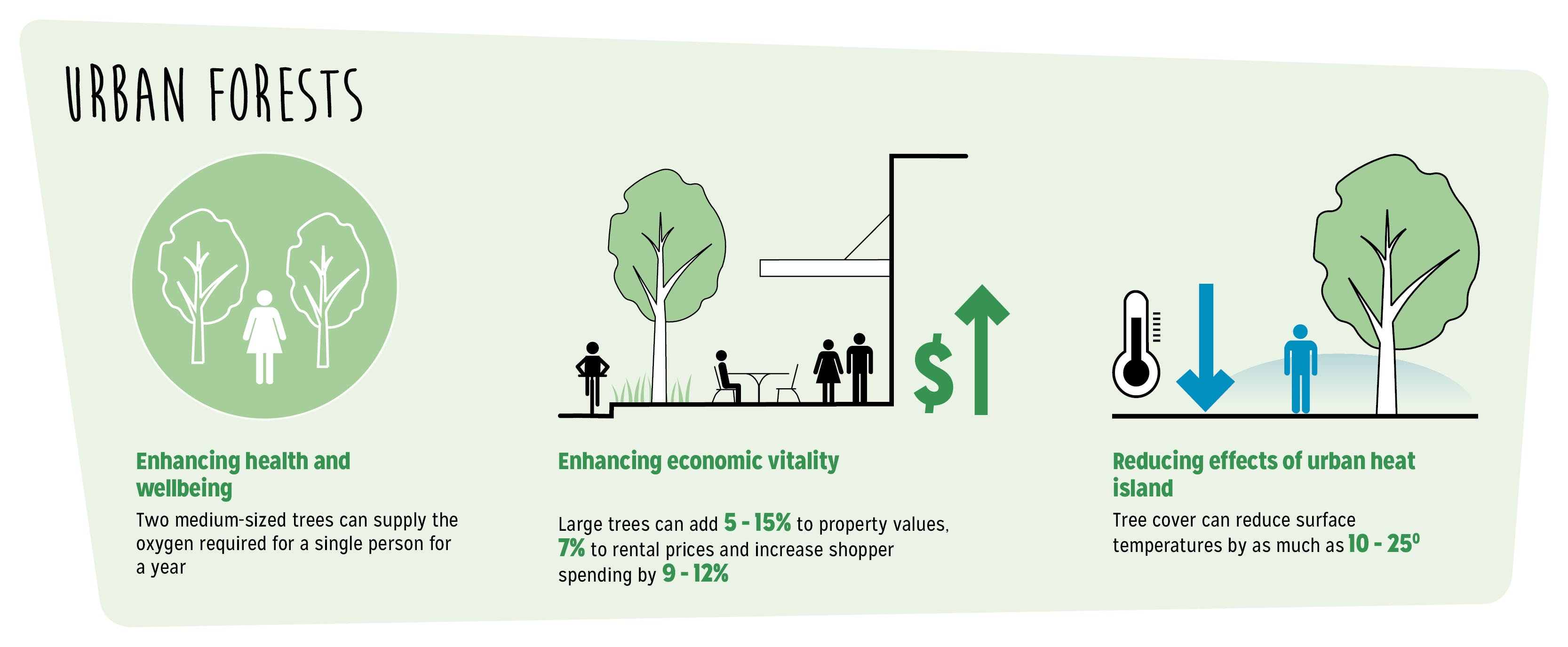 The Benefits of Urban Forests