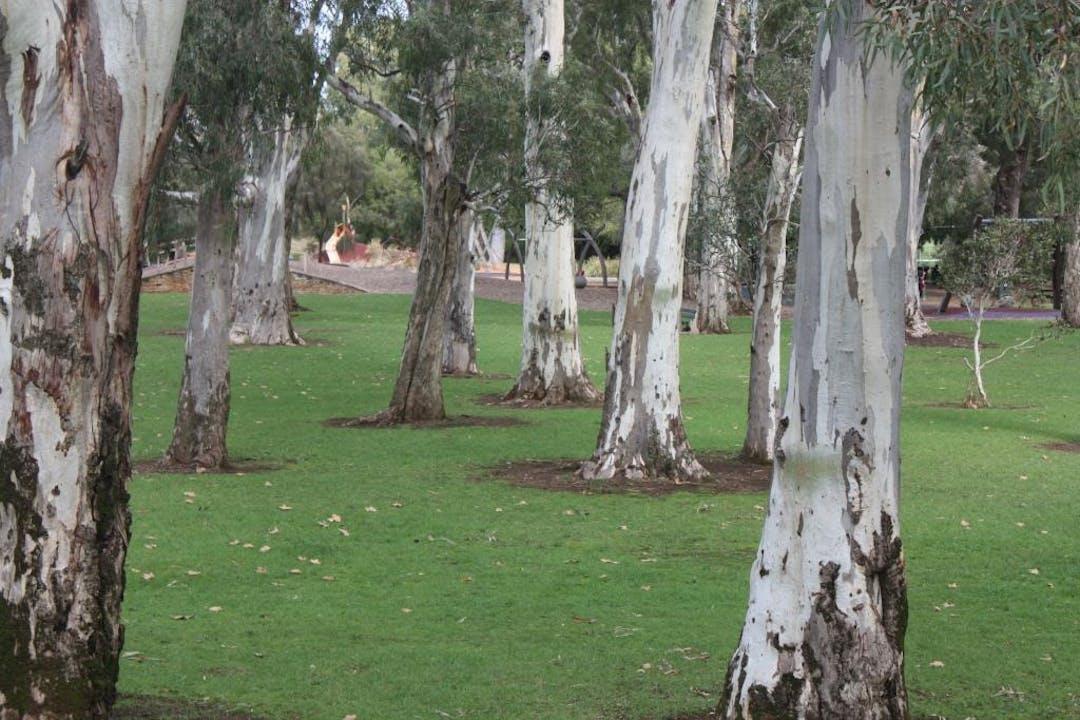 Compressed kensi gardens image