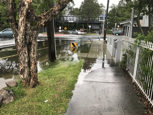 Flooding in Leichhardt