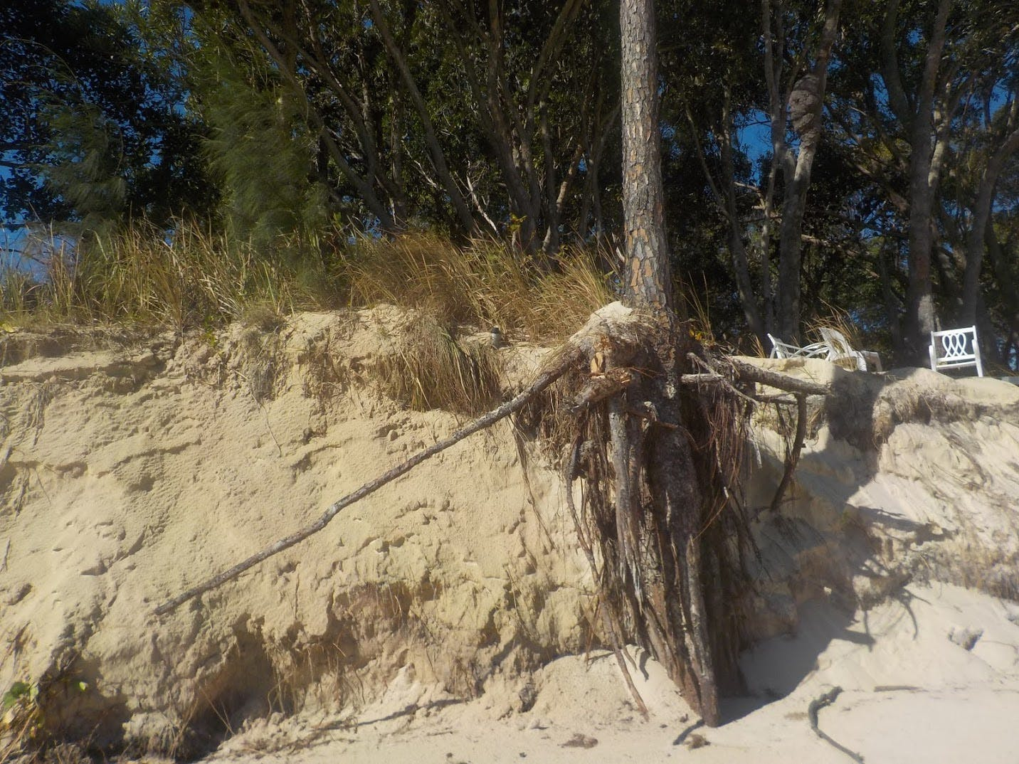 Beach Erosion Moreton Island