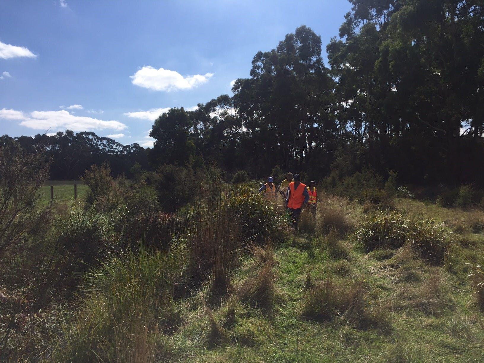 Technical survey at Boundary Creek