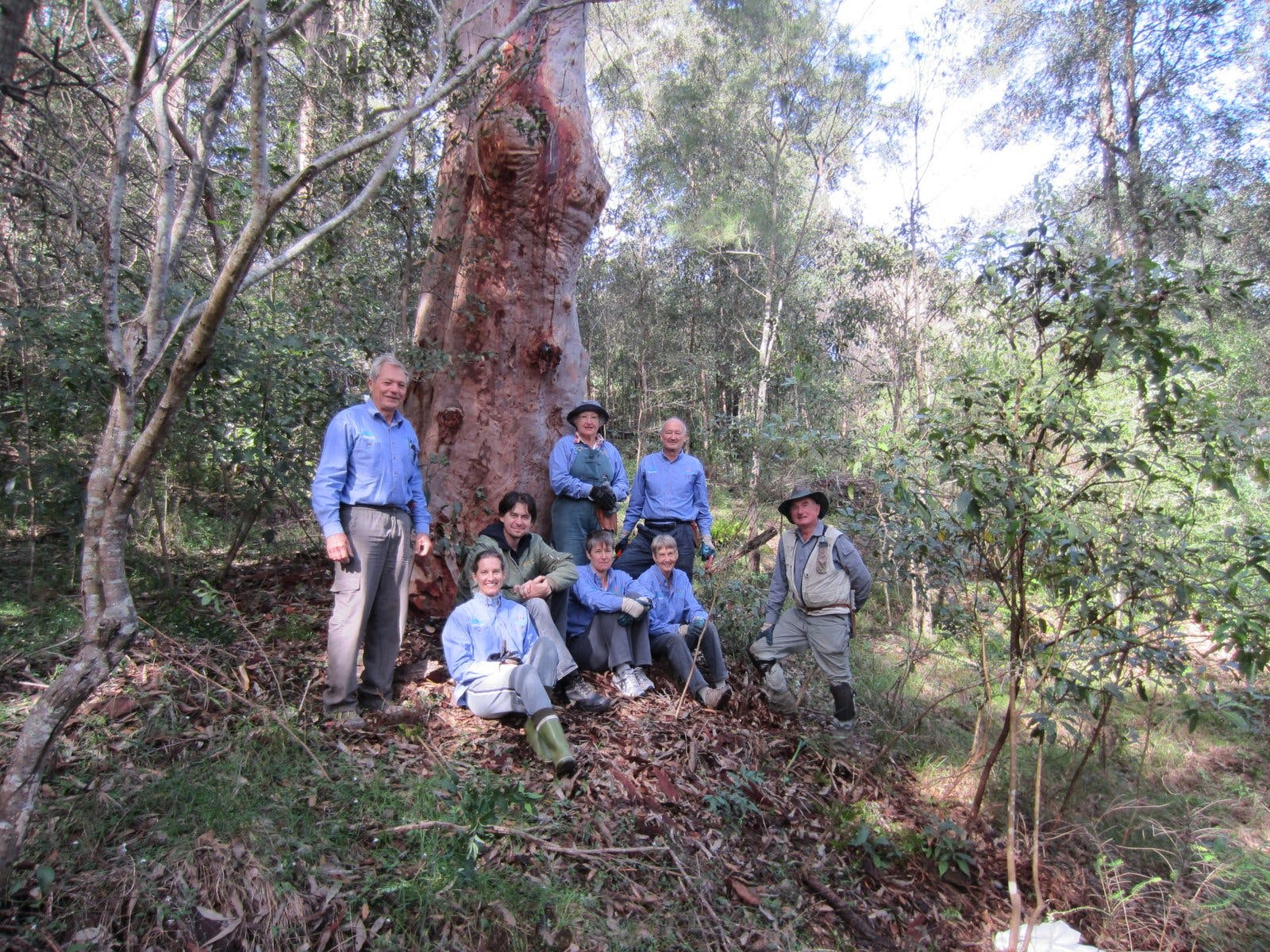 Blue Gum Bushcare Group Volunteers