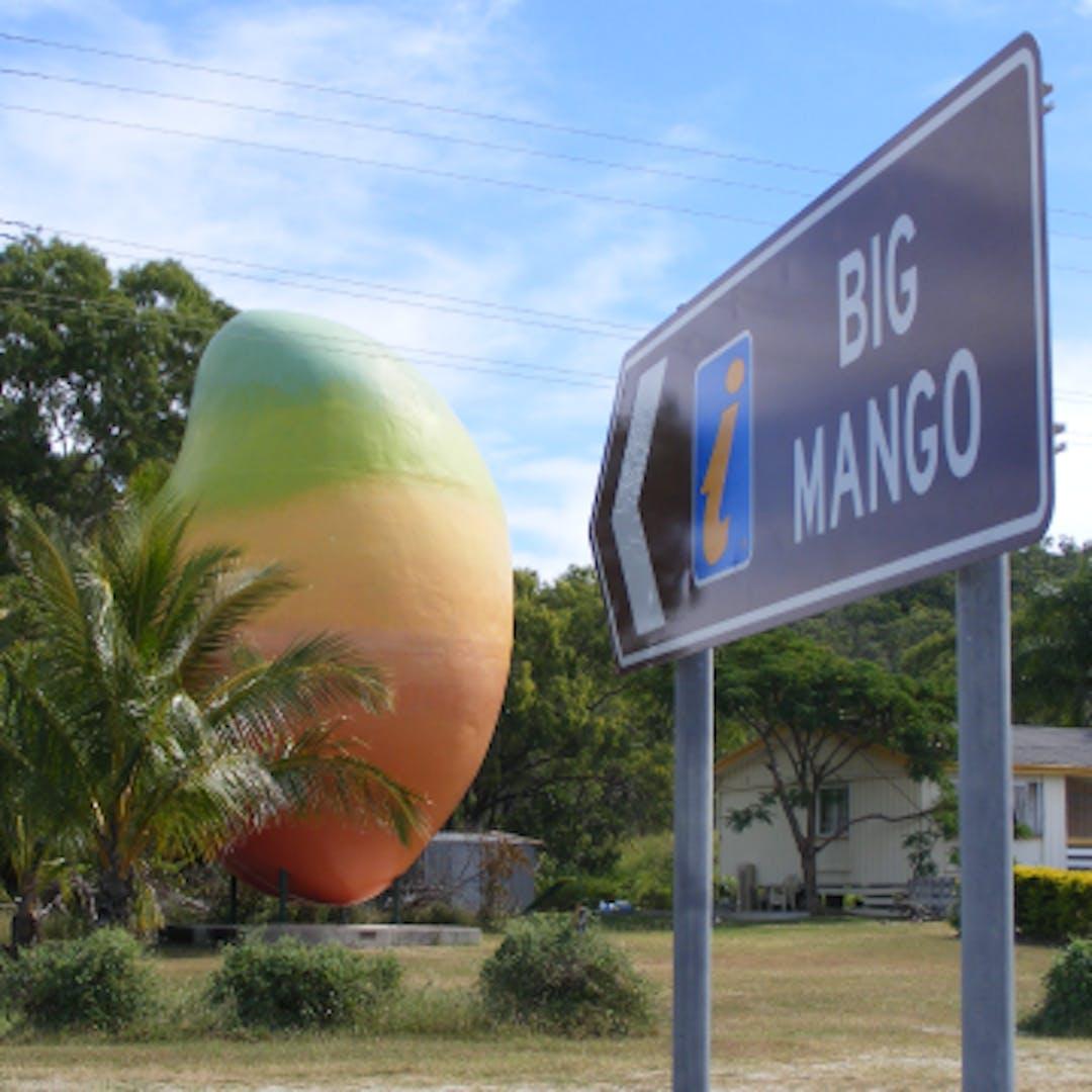 Cropped big mango