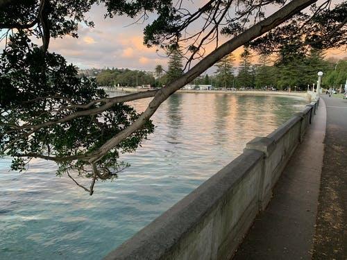 Rose Bay Promenade at dusk