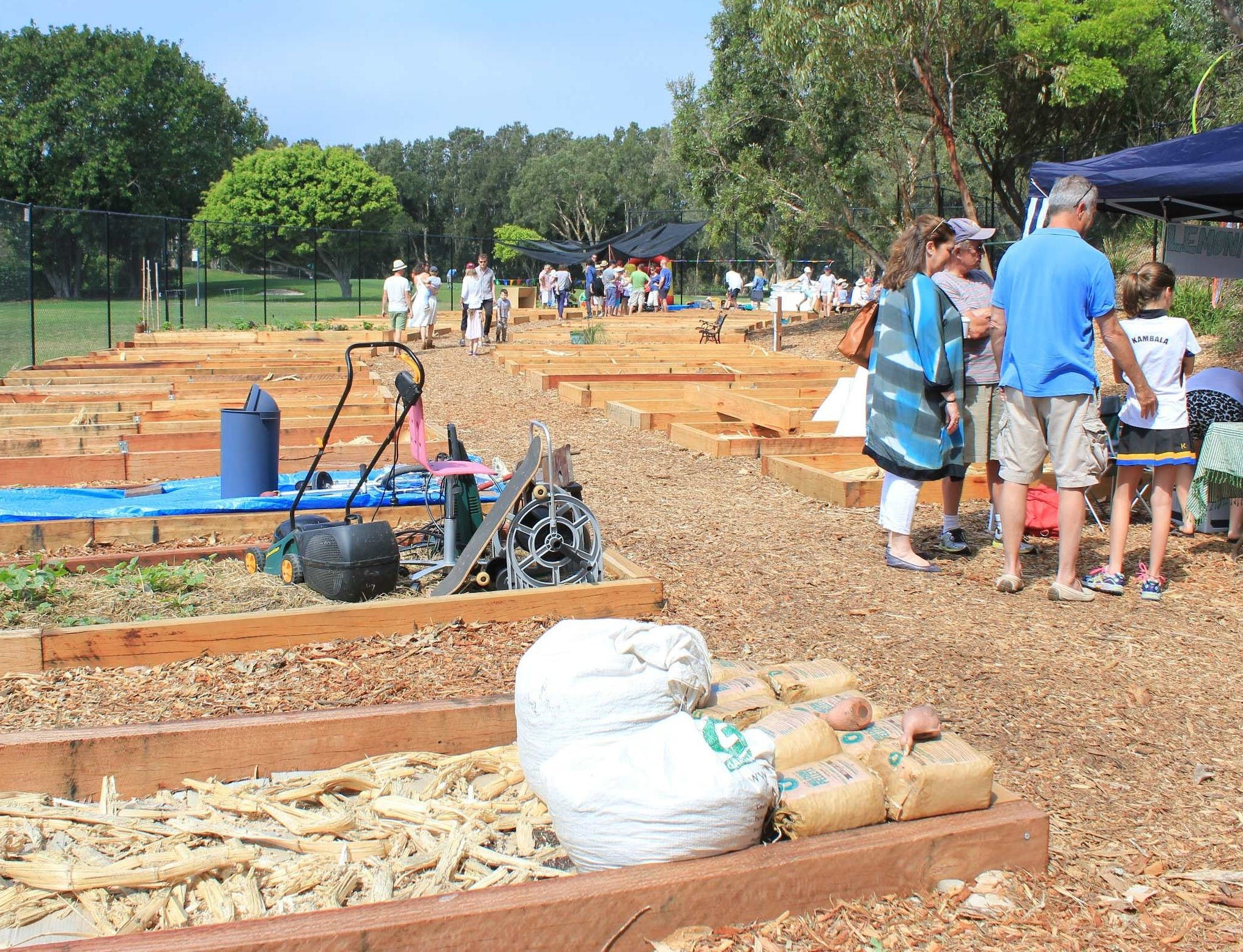 Getting Started - Rose Bay Community Garden in 2014