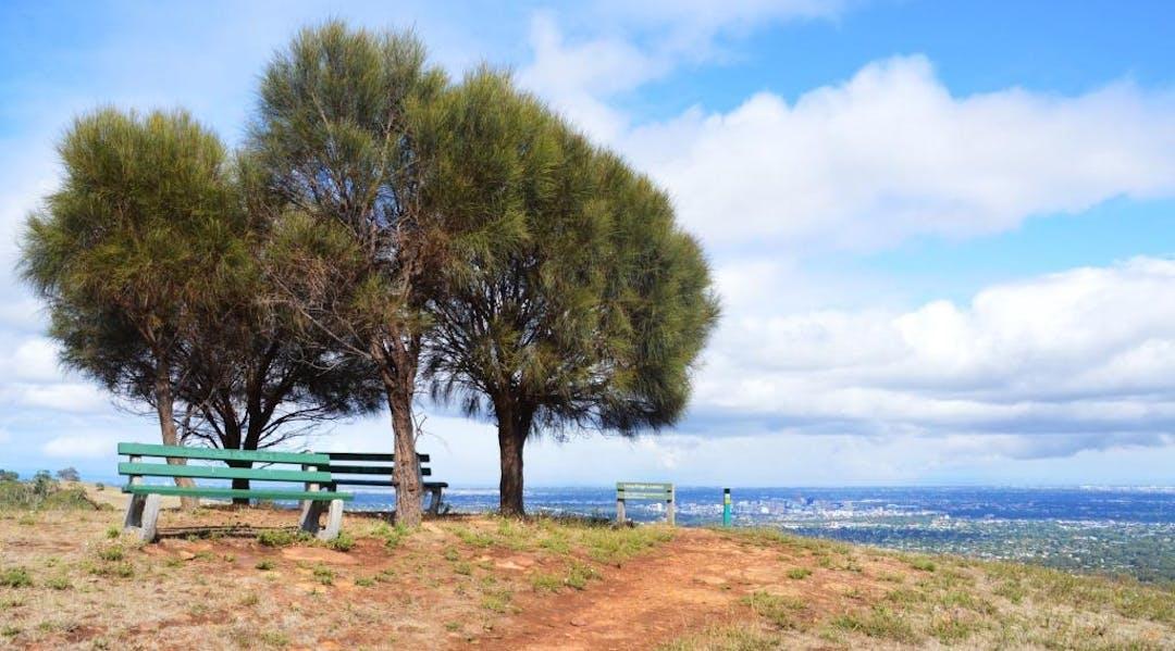 Burnside recreation trail strategy 1