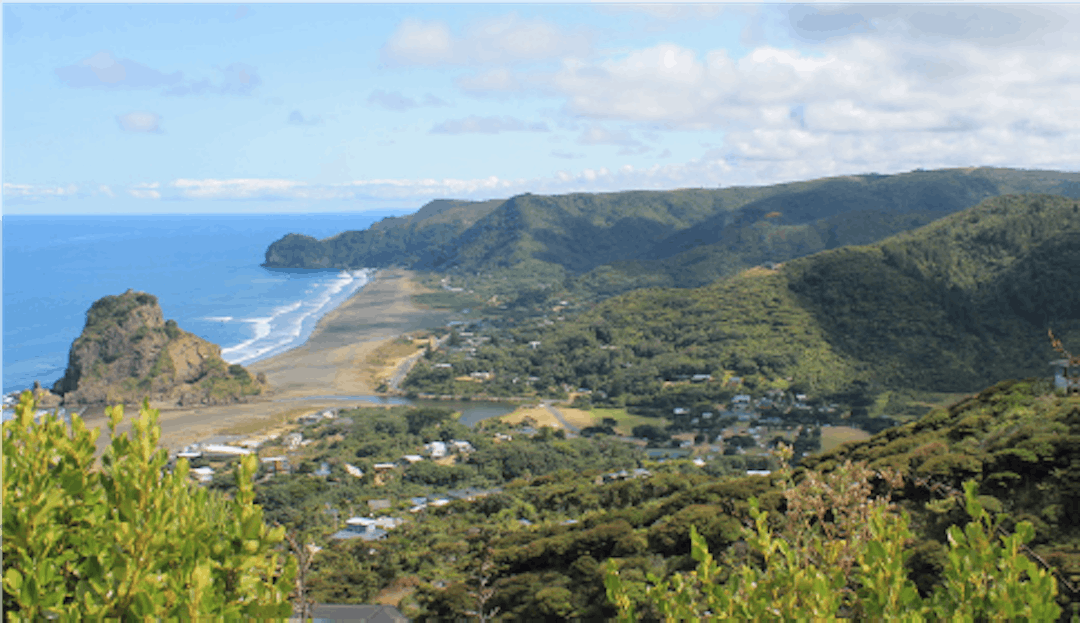 Piha, showing part of the wetland on the far right (in valley) (2020), Liz Oldfield