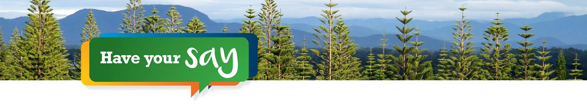 Local Environmental Plan 2011