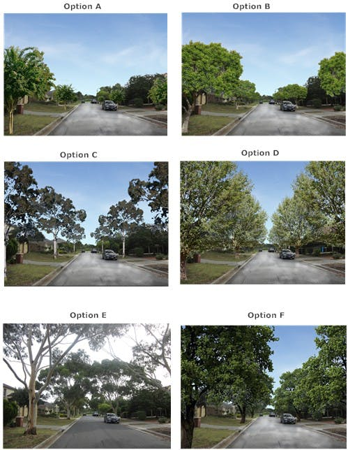 Streetscape Preference Options