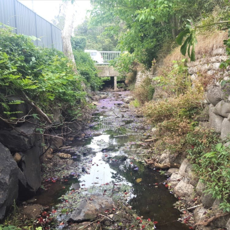 Channel and culvert at Dumbrell Road, Bulli