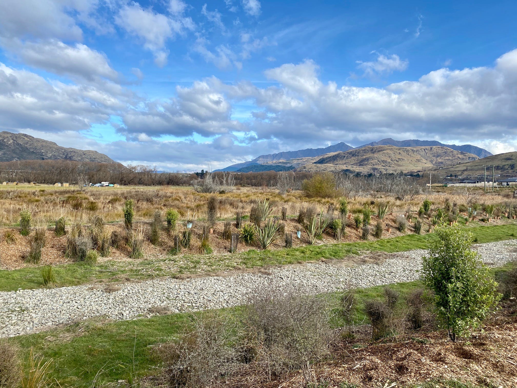 Shotover Country Wetlands