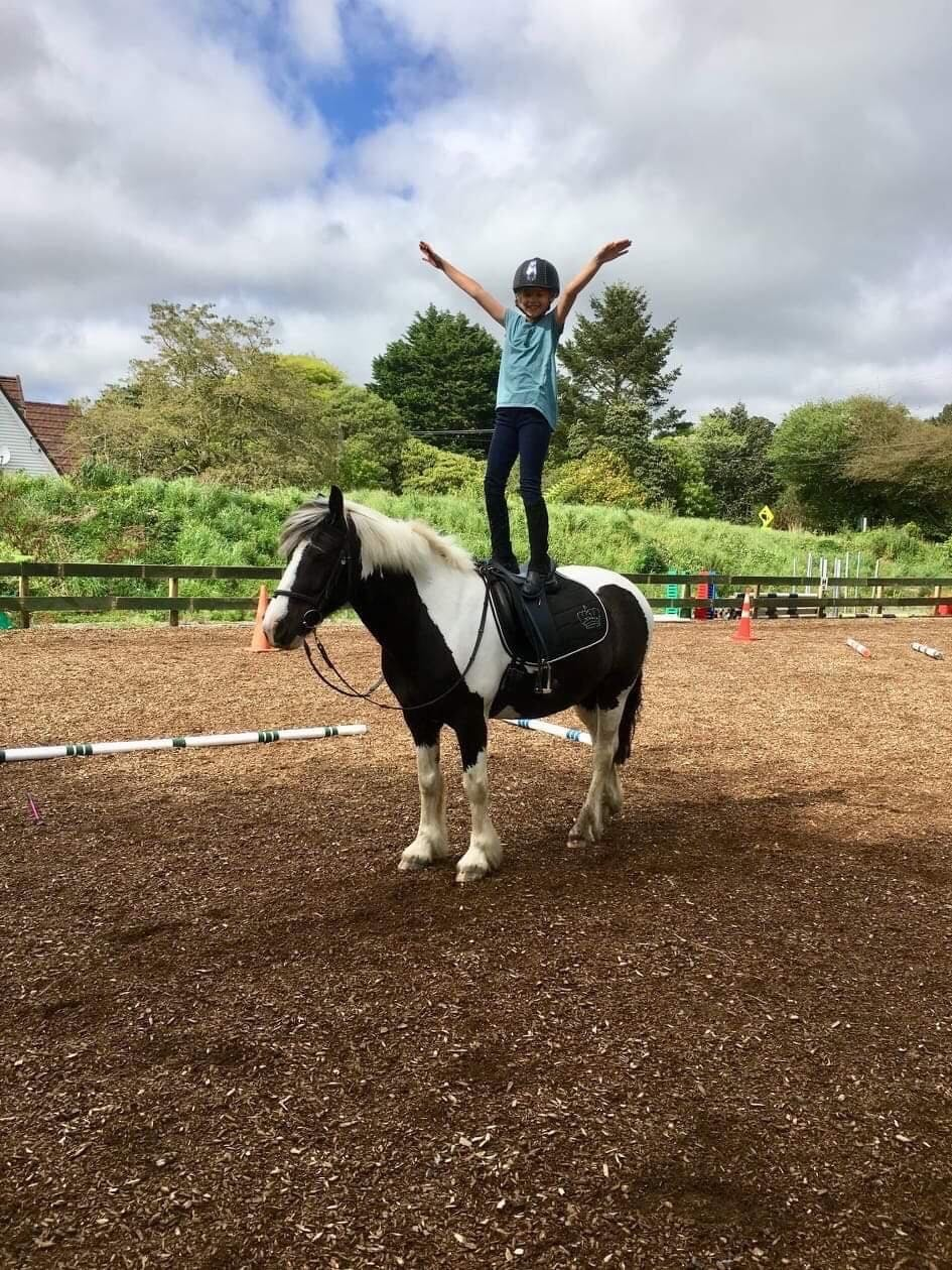 Riding for Disabled at Battle Hill Farm Forest Park
