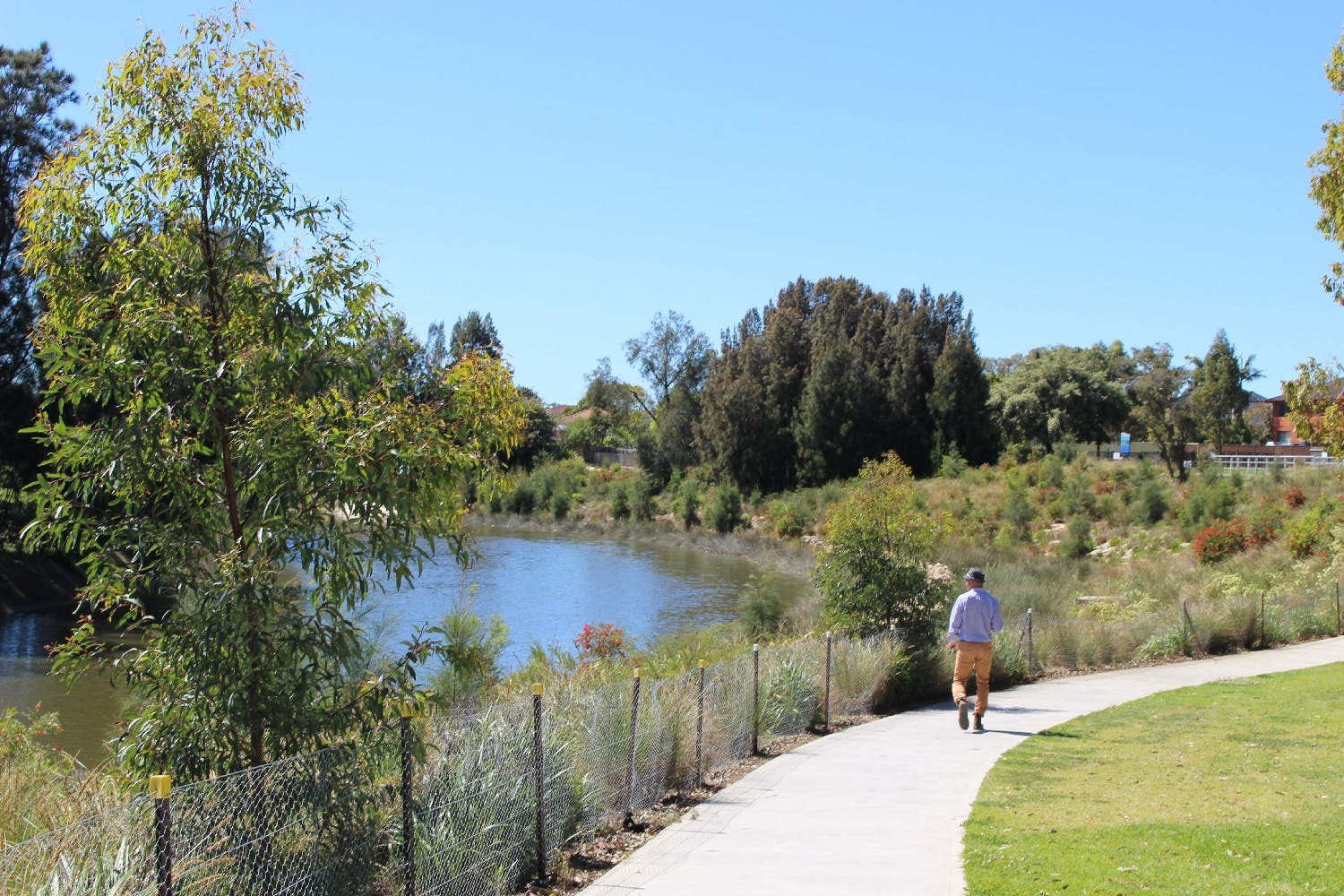 Improved vistas with boardwalks and areas to sit and relax (Photo Cooks River)