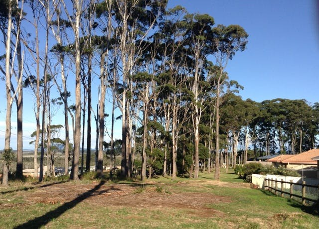 Yaluma Drive Reserve