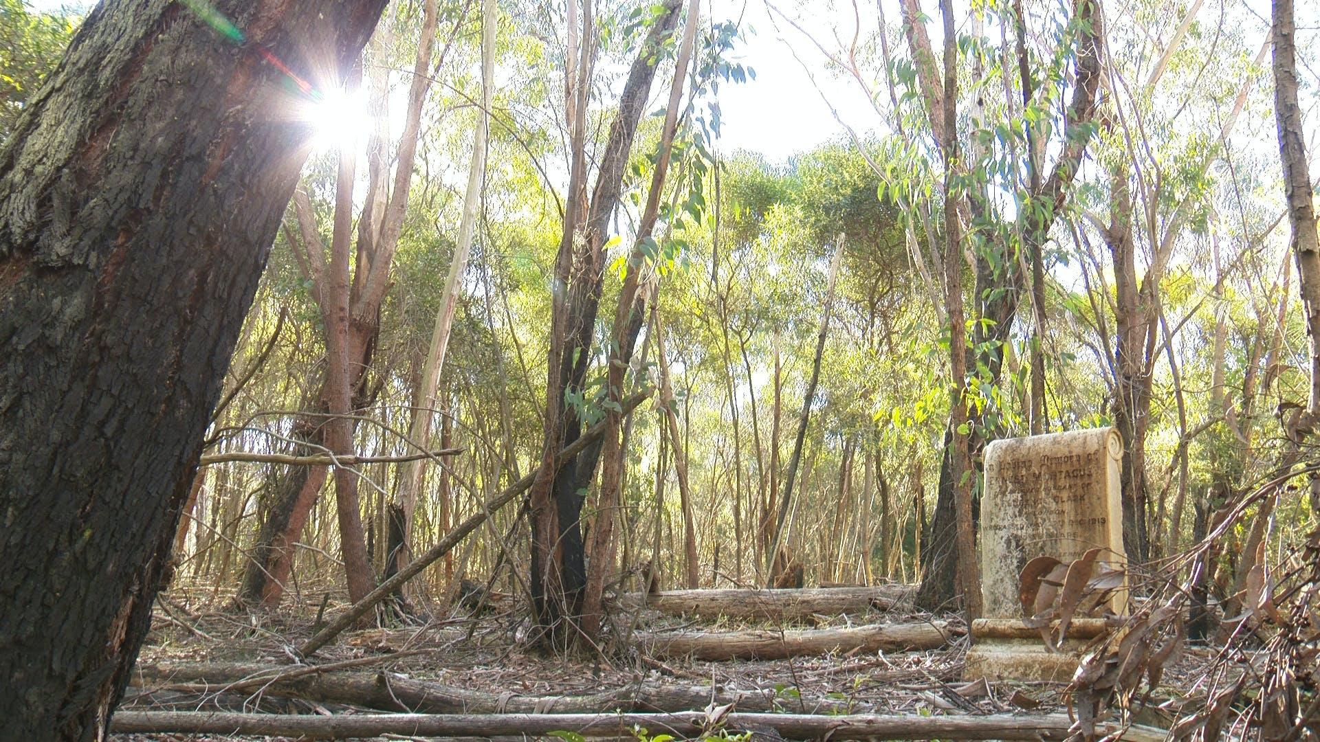 Garrawarra raw footage.still041