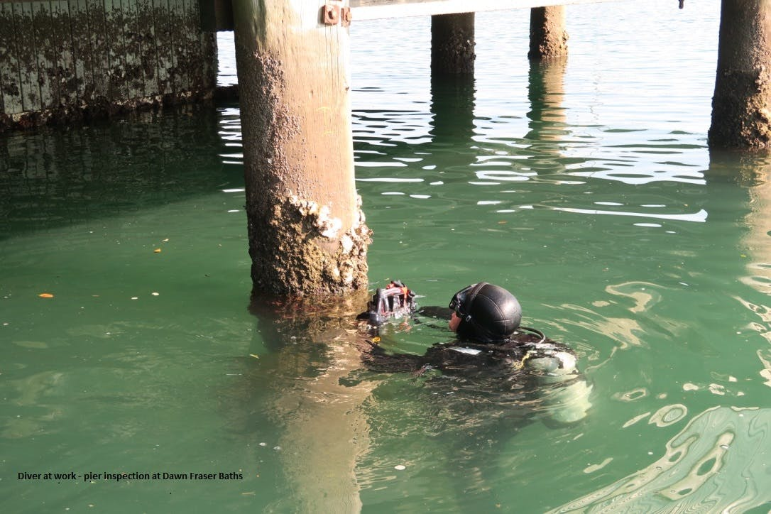 Dawn Fraser Baths Pier Inspection