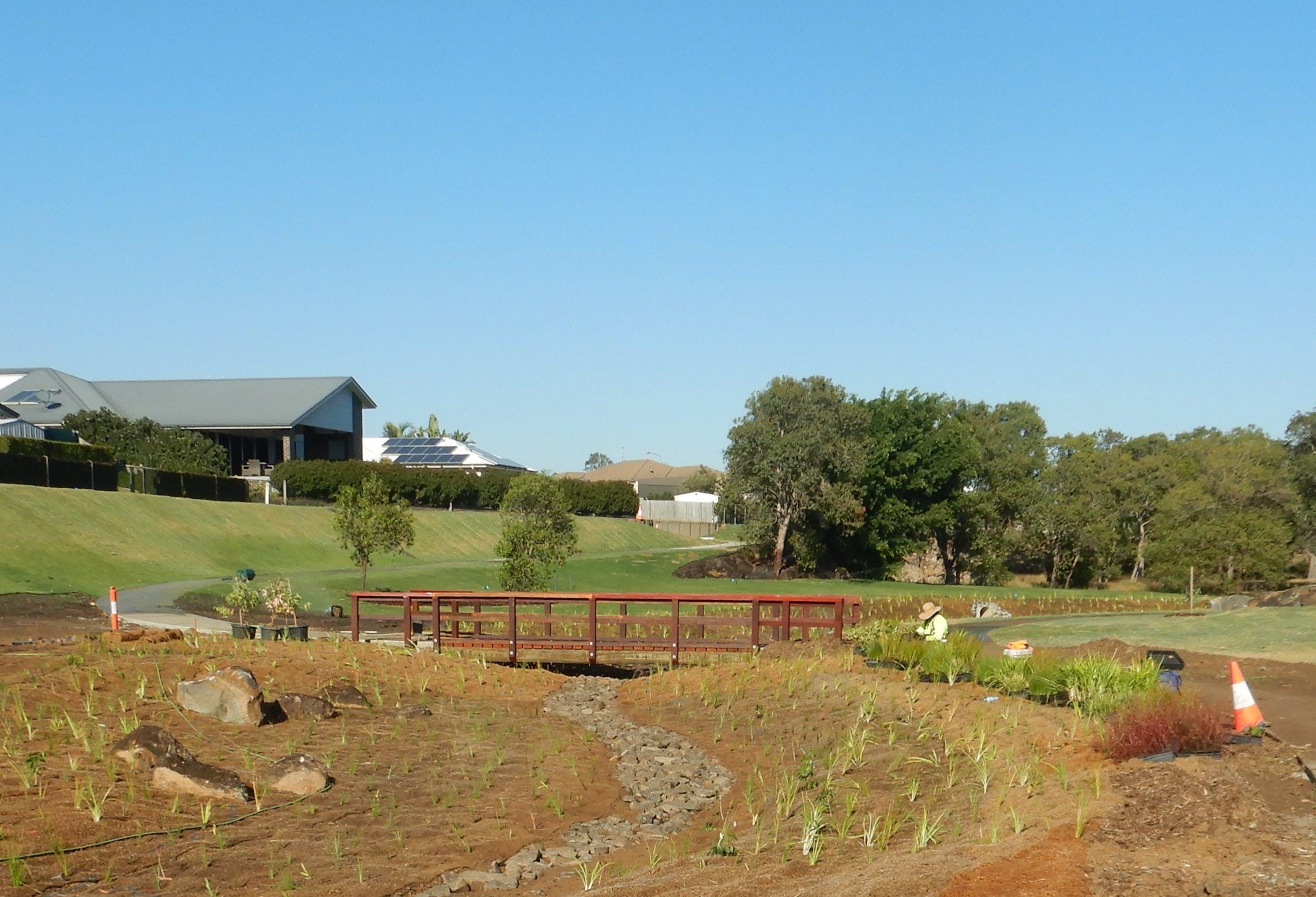Planting and footbridge.jpg