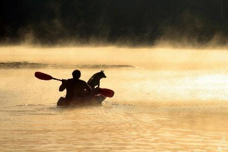 Man N Dog In Boat