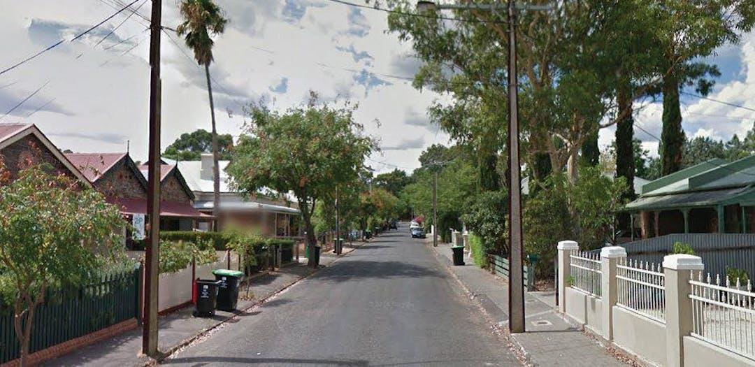 Wombat crossing image.docx