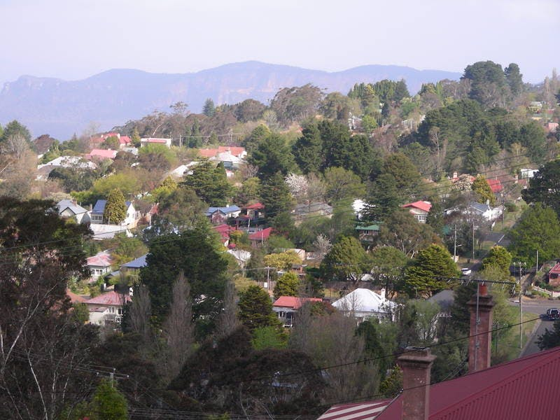 Katoomba skyline - a distinctive mix of indigenous, coniferous and deciduous trees