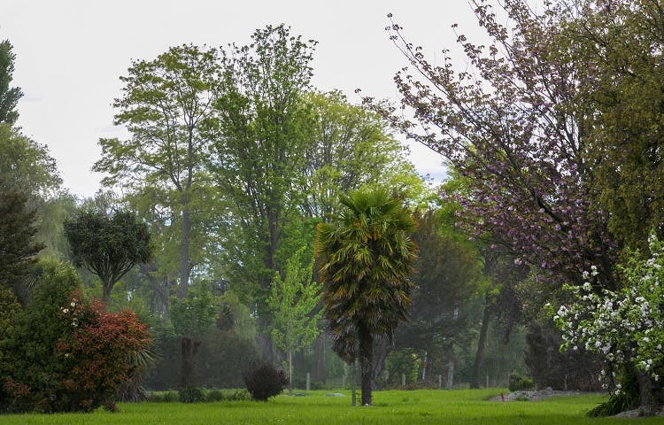 Generic image of parkland in Christchurch