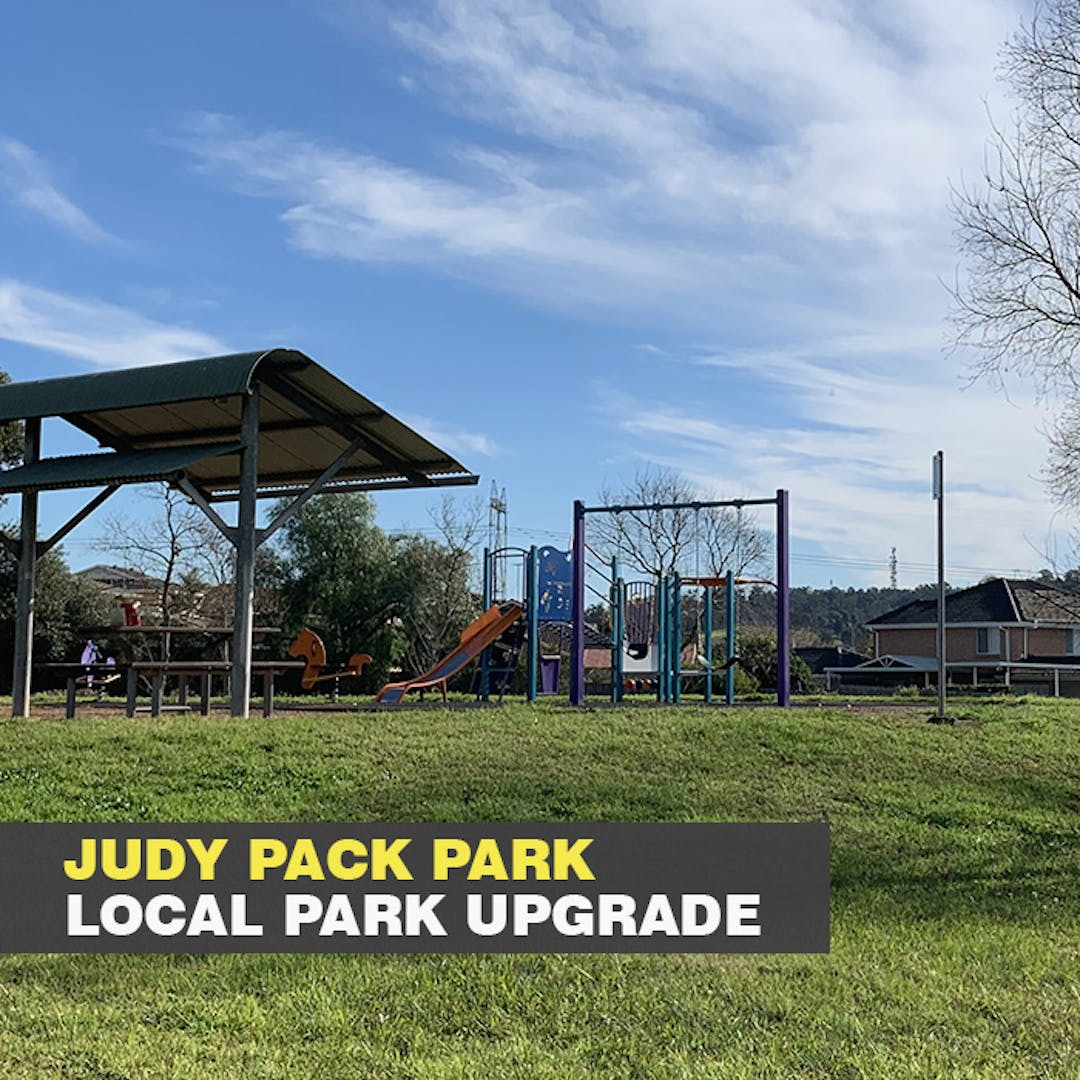 Photo of existing play unit with slides, rockers, children's dual swing set, picnic setting and shelter with green grass and blue sky, located in Judy Pack Park.