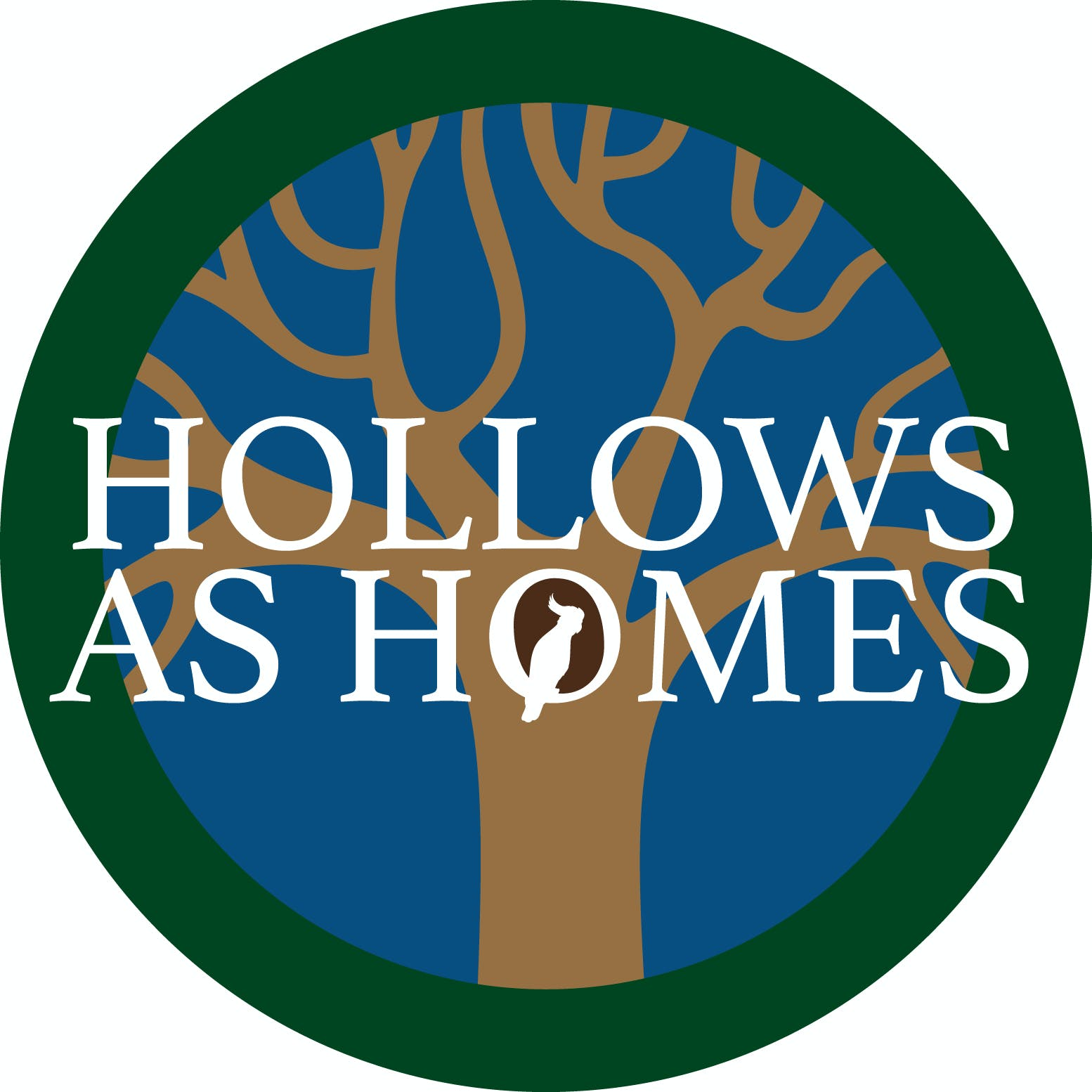Hollow Homes Logo Rgb Lge