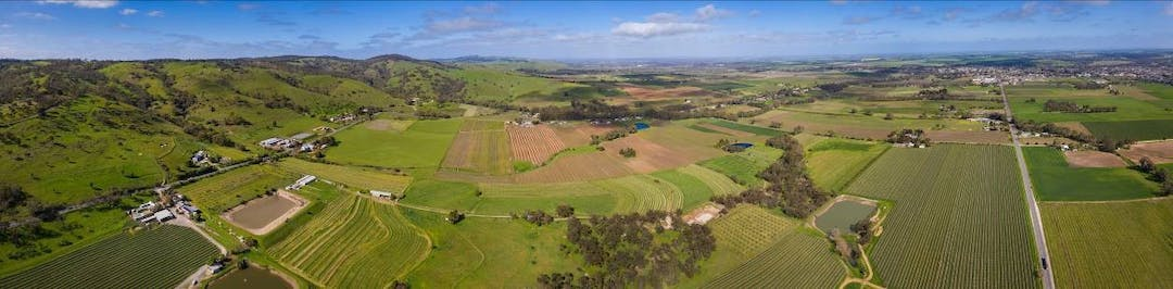 Panoramic aerial view towards Tununda in the famous wine growing Barossa Valley region; many vineyards are clearly visible in the foreground