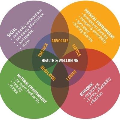 Public Health Plan Diagram