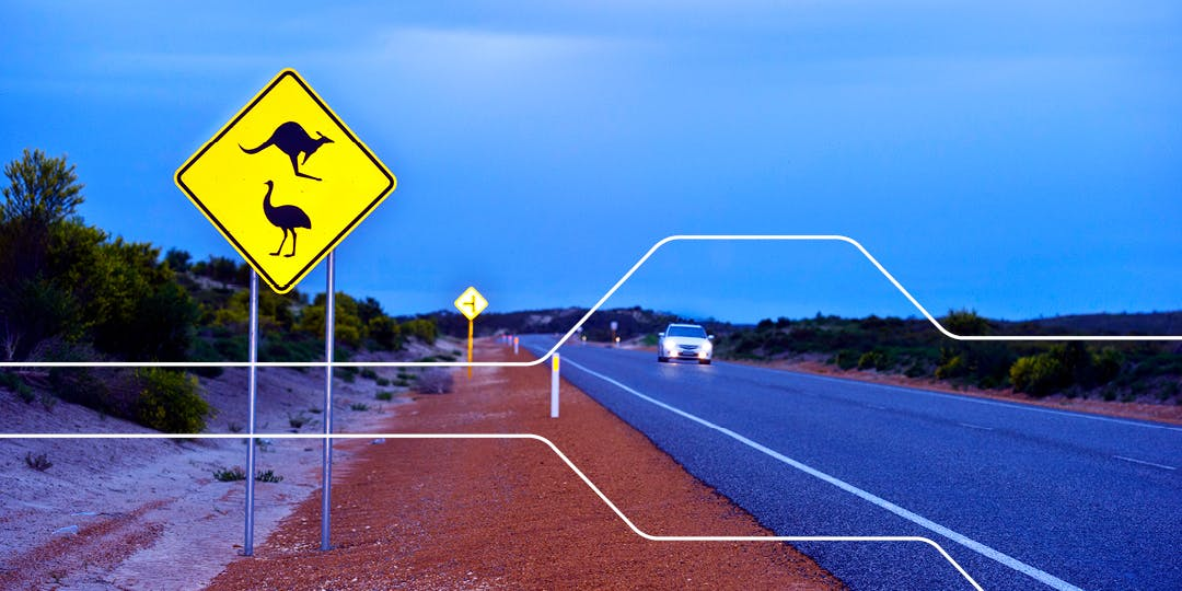 The Department of Transport is reviewing some of the laws and requirements for driving in WA with an overseas driver's licence.