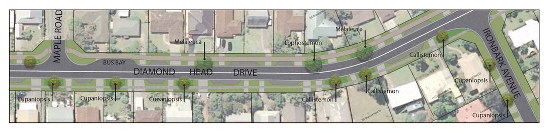 Diamond Head Drive is being upgraded between Pine Crescent and Sandys Beach Drive. Works include road reconstruction, installation of kerb and gutter, new drainage, relocation of water main and 10 power poles, in addition to construction of a 2.5-metre shared pathway, formalised parking bays and landscaping.