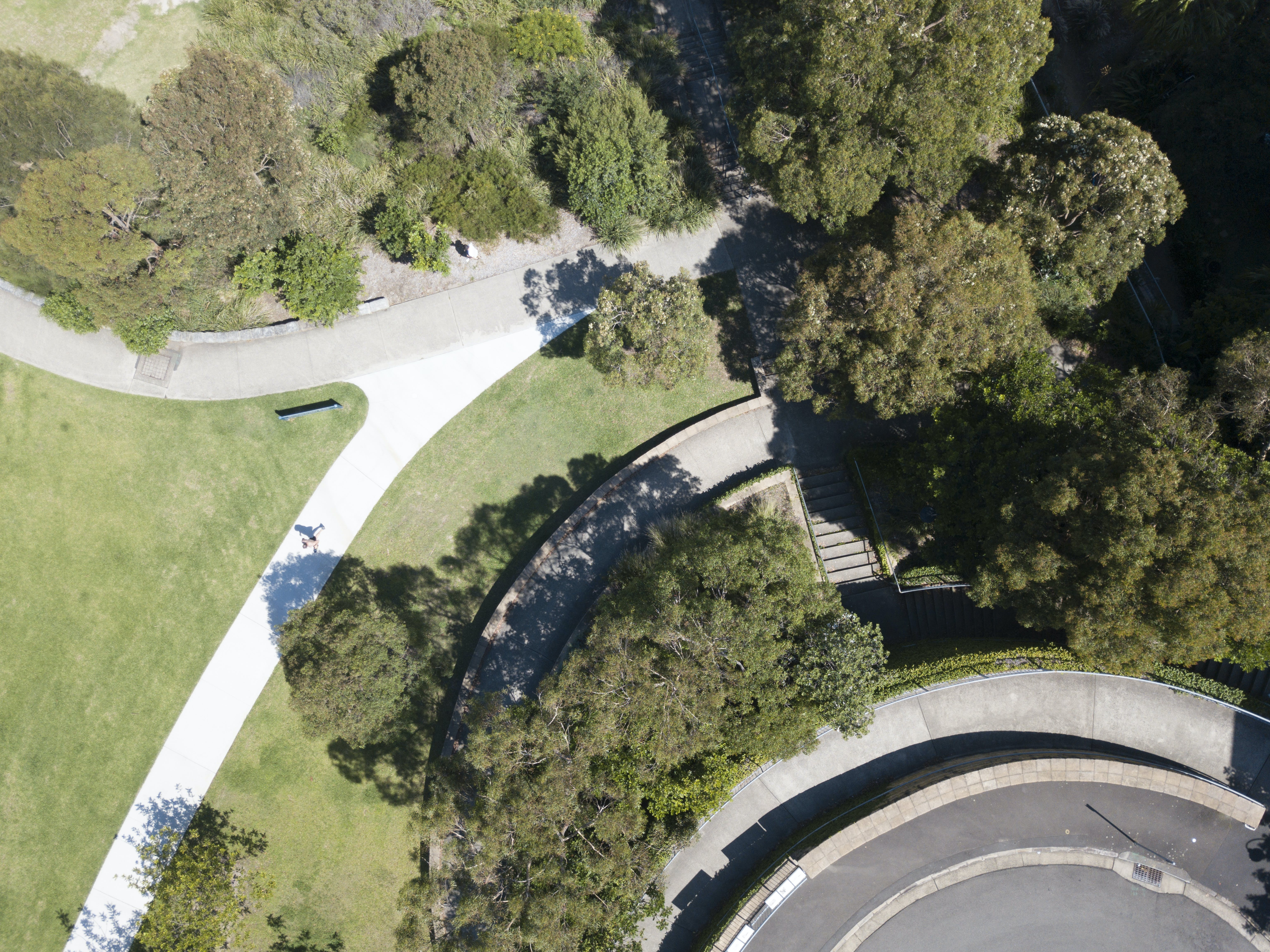 aerial view of a road, cycleway and grass and trees