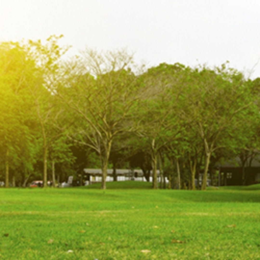World environment day hys image