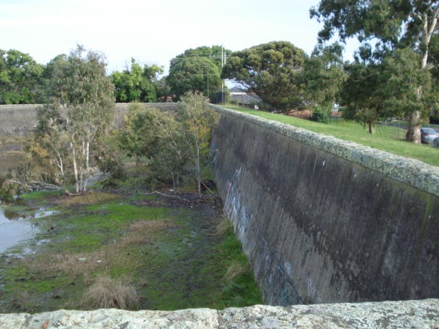 Trees growing at the northern end in concrete basin, walls are nearly 6m high.