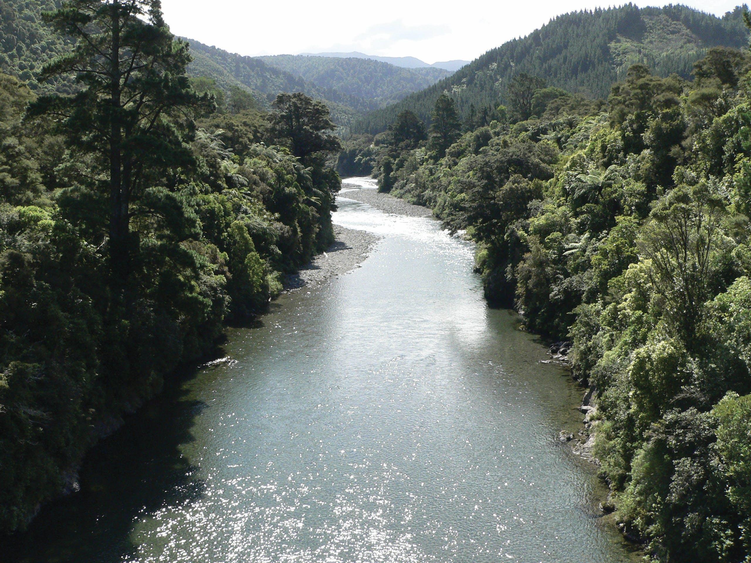 Waiohine River 2