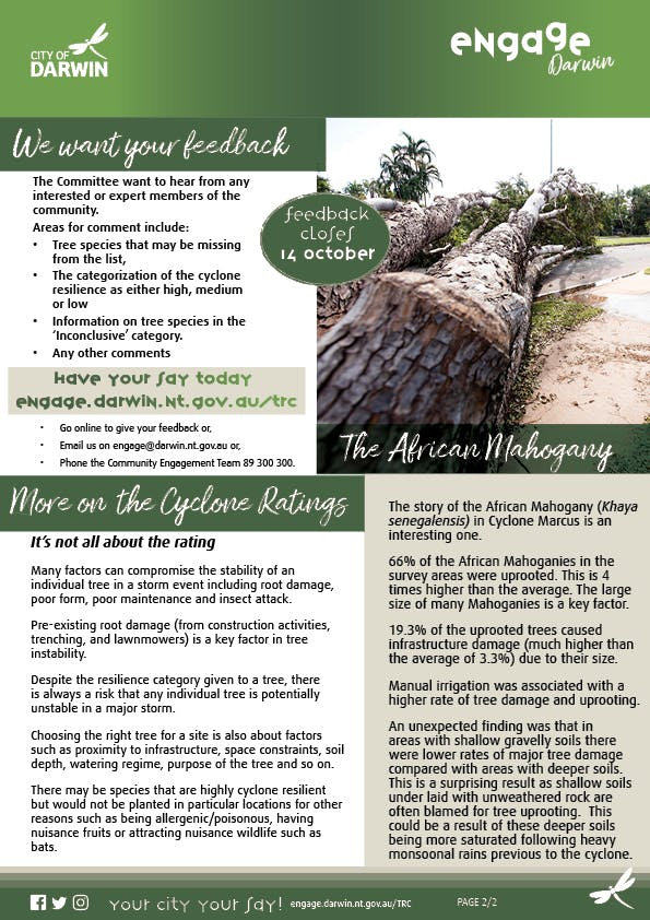 Tree Replanting Consultation Fact Sheet Revised32