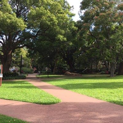 Chatswood Park