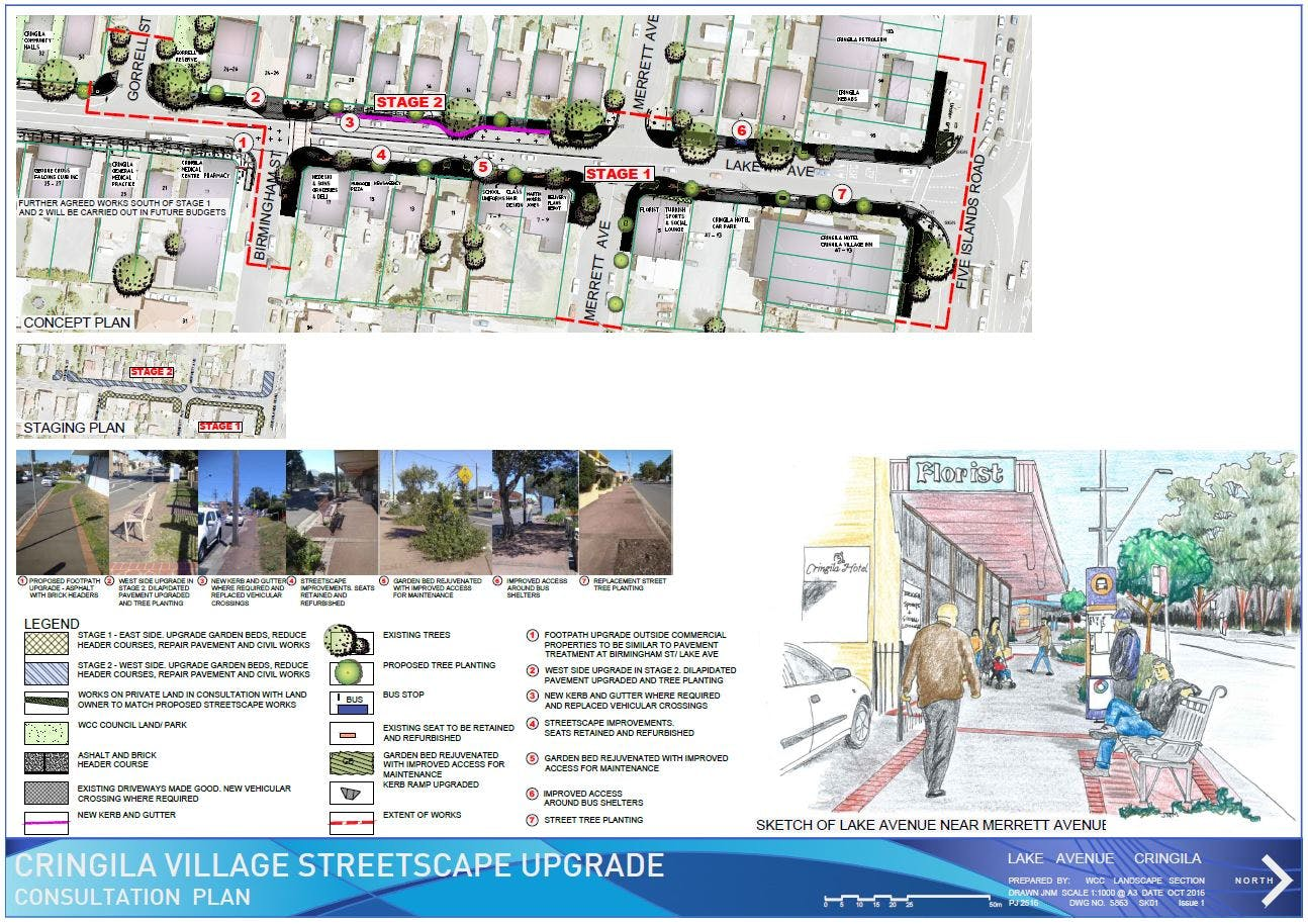 Proposed Streetscape Improvements for Lake Ave, Cringila Village - Consultation Plan