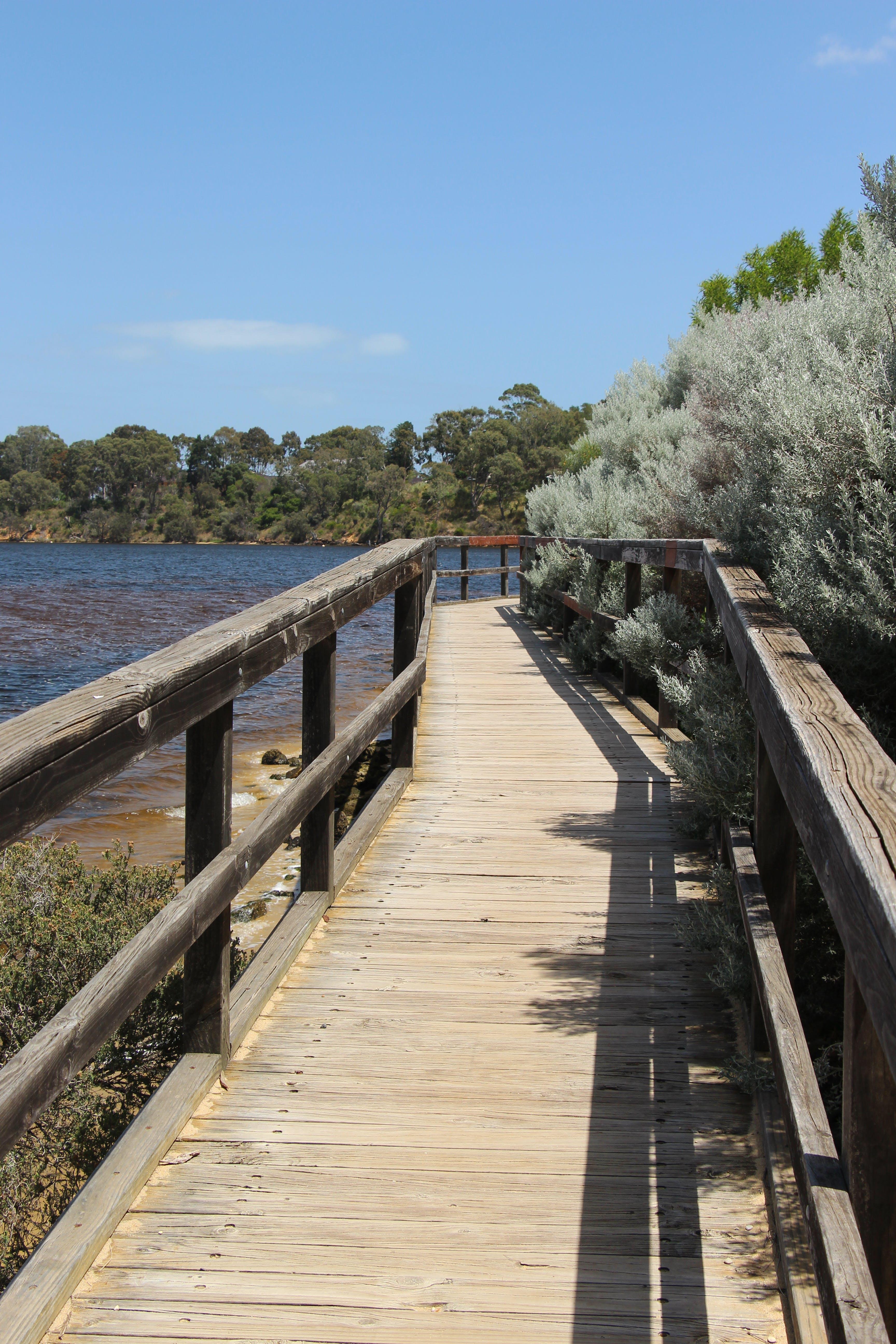 Salter Point boardwalk