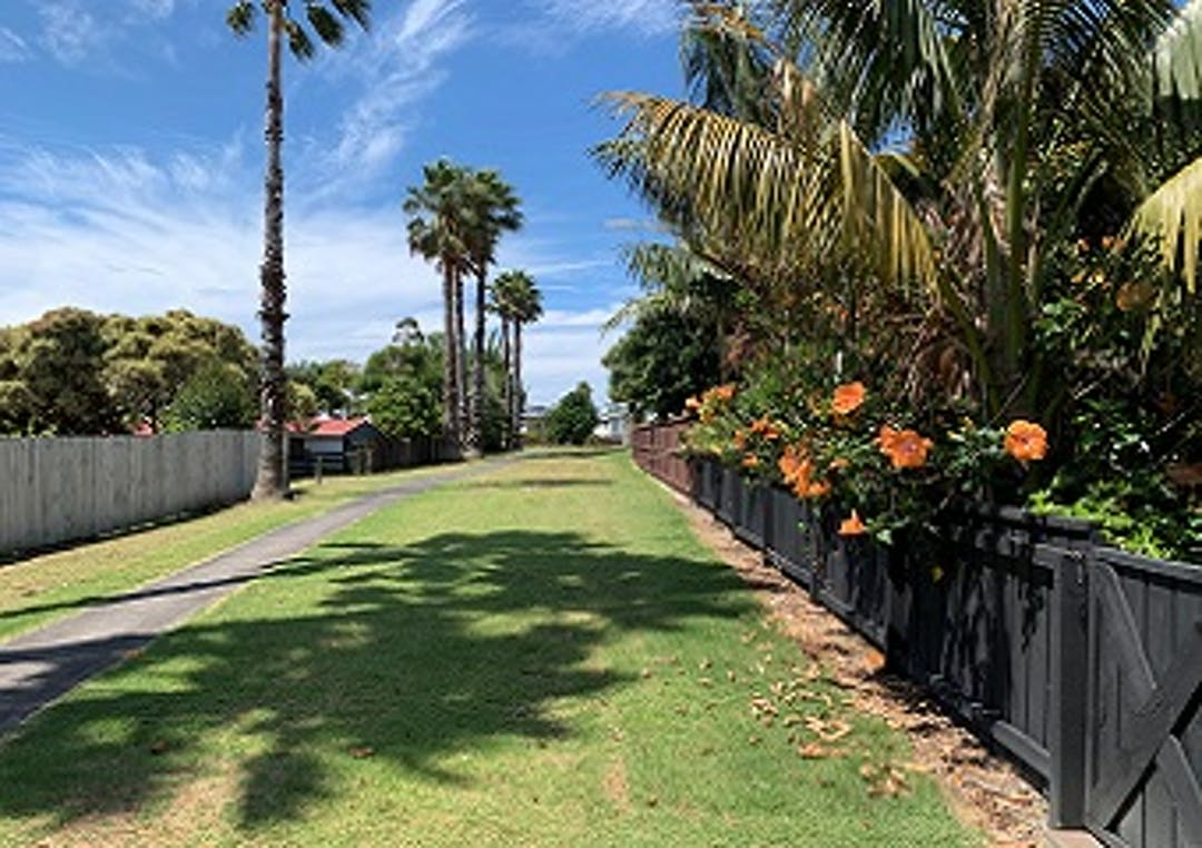 A grass area with fences on either side and a concret path down the middle.  Several tall trees are seen in the background and large orange flowers grow out of the right hand fence on the left.